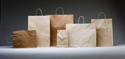 Picture of Carry Bag Brown Paper Twist Handle 265 x 160 + 50 Baby 110gsm -CARB063440- (SLV-50)