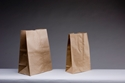 Picture for category Paper Carry Bags